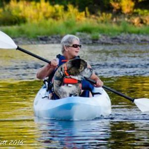 dog canoeing